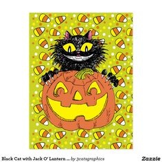 Black Cat with Jack O' Lantern in Lime Postcard