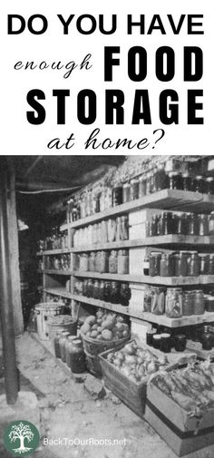Why Should You Store Food at Home?