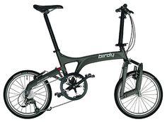 Birdy II Monocoque bike.