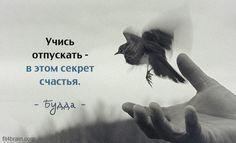 Одной фразой Мысли одной фразой – когда одного предложения достаточно, чтобы задуматься.