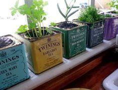 ♥♥♥  Uma horta dentro de casa Olás! Já falamos antes sobre como pode ser bacana ( e econômico) preencher os espaços da casa com bastante verde. Hoje vamos além e vamos dar di... http://www.casareumbarato.com.br/uma-horta-dentro-de-casa/