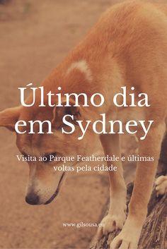 Último dia em #Sydney #Austrália #Featherdale