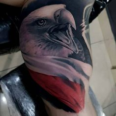 Bold Eagle, Polish Tattoos, I Tattoo, Tatoos, Album, Ideas, Art, Male Tattoo, Cake
