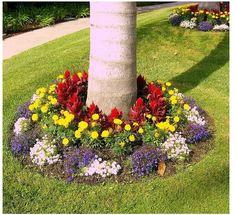 add a flower bed around tree