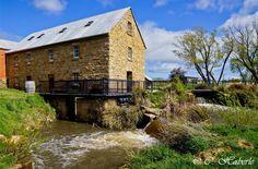 Nant Estate #Whisky Distillery, #Bothwell. Photo by @Carol Van De Maele M Haberle for Think #Tasmania.