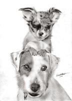 Two Dogs by Regius