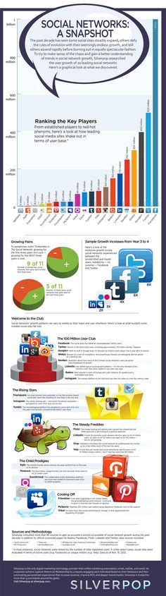 Top 20 Social Networks Infographic