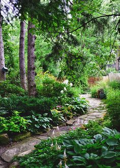 Paths wind through the site and are layered with various shade plants such as Hosta and Astilbe. Where the sun breaks in, plants such as Rudbeckia and Oriental lilies are grown