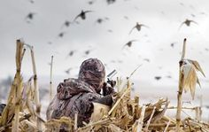 Waterfowl Hunting: What You Need to Know About Steel Shot | Outdoor Life