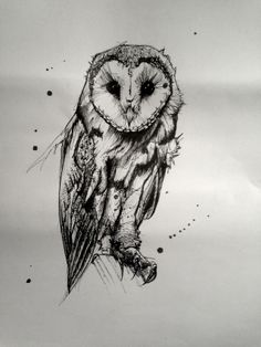 owl tattoo design owl tattoo - owl tattoo design - owl tattoo for women - owl tattoo drawings - owl tattoo men - owl tattoo small - owl tattoo for women small - owl tattoo sleeve Owl Tattoo Drawings, Tattoo Sketches, Art Sketches, Tattoo Owl, Owl Tattoos, Arm Tattoo, Fish Tattoos, Sleeve Tattoos, Art Drawings