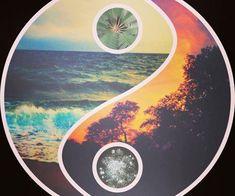 Ram Dass - Highlights - Attachment & Addiction