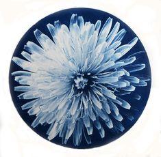 Birgitta Wilson - Painter/Printmaker Printmaking, Dandelion, Art, Art Background, Dandelions, Kunst, Printing, Graphics, Gcse Art