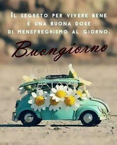Buongiorno Masquerade Party Invitations, Italian Memes, Day For Night, Pocahontas, Mary, Animals, Quotes Positive, Pictures, Funny
