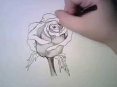 Resultado de imagen de dibujos de rosas a lapiz  rosas