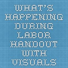 What's happening during labor handout with visuals Doula Training, Doula Business, Stages Of Labor, Childbirth Education, Baby Time, Business Ideas, Maui, Brain, Babies