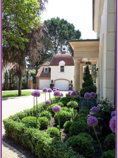 Front Yard Landscaping Ideas - Take these cheap and also easy landscaping ideas for an attractive backyard. Front Gardens, Formal Gardens, Outdoor Gardens, Indoor Outdoor, Boxwood Landscaping, Front Yard Landscaping, Landscaping Ideas, Acreage Landscaping, Boxwood Garden