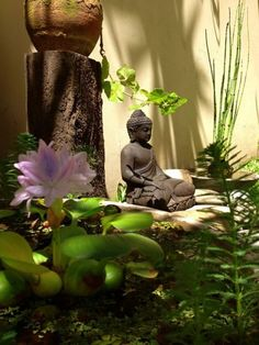 If a man's mind becomes pure, his surroundings will also become pure Buddha.