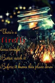 139 Best Catching Fireflies Images Firefly Painting Jars
