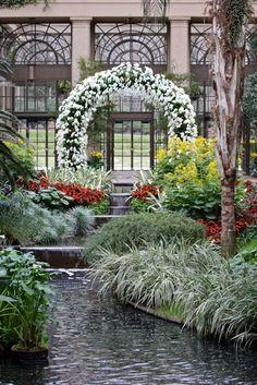 Orchids at Longwood Gardens | Fine Gardening