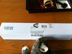 Even the kitty gets excited when #quarterly boxes arrive! #JXF01