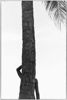 Elliott Erwitt, Tahiti, 1980. © Elliott Erwitt / Magnum Photos -repinned by Los Angeles studio photographer http://LinneaLenkus.com  #photography