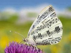 Musical stamped moth or butterfly Sound Of Music, Music Is Life, My Music, Musica Love, Butterfly Music, Grunge, Music Symbols, Gift For Music Lover, Music Pics