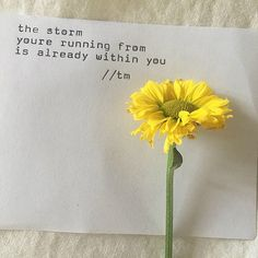 she smells like rain   and her heart   beats like thunder   it's no wonder   she's actin' like   a one-winged dove   that can't escape   the lightning above   because the storm   she's running from   is already within her   in order to fly   she's got to   surrender   @thugunicorn #theshebook