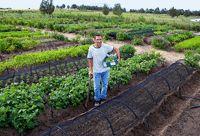 Become an Organic Farmer Start an Organic Farm - Start a Small Farm - How to Start a Farm Business Growing Gardens, Farm Gardens, Outdoor Gardens, Organic Gardening Tips, Organic Farming, Permaculture, Farm Business, Business Ideas, Starting A Farm