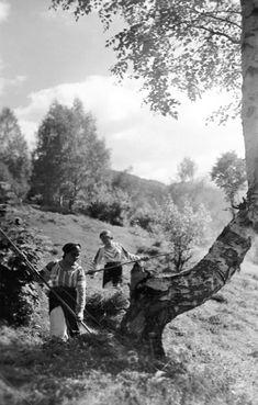Old Romania – Adolph Chevallier photography – Romania Dacia Old Pictures, Old Photos, Vintage Photos, Michael I Of Romania, Romania People, Romanian Girls, Royal Caribbean Cruise, Beach Trip, Beach Travel