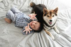 Maru in Michigan写真のワークショップ in 大阪 Baby Dogs, Dogs And Puppies, Animals For Kids, Cute Animals, Japanese Dogs, Lovely Creatures, Shiba Inu, My Animal, Friends In Love