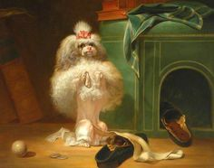 Dog of the Havana Breed, by Jean Jacques Bachelier, 1768 ~