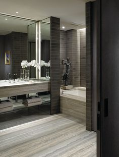 Master bathroom idea
