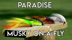 Paradise Cove Musky on a Fly - YouTube Pike Flies, Paradise Cove, Fly Tying, The Creator, Youtube, Youtubers, Youtube Movies, Fishing Lures