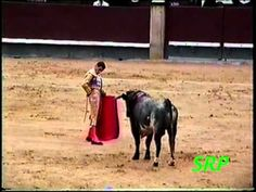Worlds Most Dangerous Sports Events - Bullfighting | Never Seen on TV