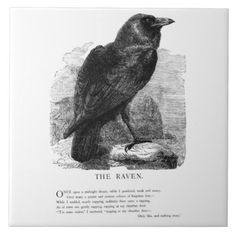 "A beautiful vintage engraving of a raven accompanied by the opening from Edgar Allen Poe's ""The Raven"" from a vintage 1875 children's book. Design copyright © 2012 Vintagerie Ephemera Ye Olde Curio Shoppe."
