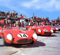https://flic.kr/p/qQwUW3 | Starting grid at Sebring 1958 | The starting grid at Sebring in 1958 shows the winning team of factory Ferrari 250 TR 58s. The #14 car won the race with Phil Hill and Peter Collins at the wheel. The #15 car was driven by Mike Hawthorn and Wolfgang von Trips but failed to finish due to transmission problems. The #16 car was driven by Luigi Musso and Olivier Gendebien and finished second. In the distance the silver #17 250 TR of John von Neumann and Richie ...