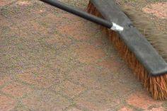 Making a backyard patio out of concrete pavers