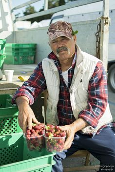 Maltese Farmer selling his fresh products at Ta' Qali, Farmers Market, Malta