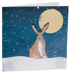 Send season greetings and help out a charity by buying one of these great charity Christmas cards. Charity Christmas Cards, Good Cause, Hare, Rabbit, Stationery, Bunny, Seasons, Painting, Animals