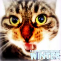 Kaiser Gaysers 'WINTER' Essential Mix by Kaiser Gayser on SoundCloud