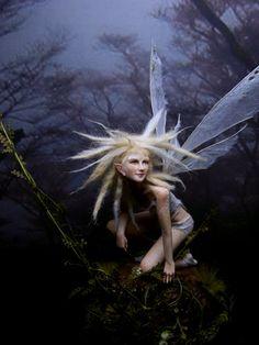 Fairy Studio Kallies.blogspot.com/