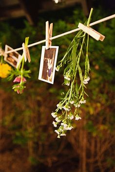 flowers + photographs