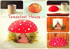 Twig and Toadstool: Toadstool Fairy House