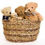Basket Of Joy: Stuffed Animal Gift Basket To Armenia