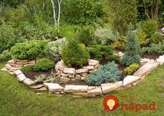 The use of stones in the landscape design. Rock Garden Design, All Family, Farm Gardens, Flower Boxes, Tropical Plants, Container Gardening, Stepping Stones, Landscape Design, Backyard