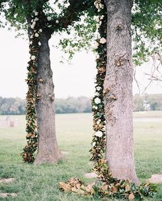 FAVORITE CEREMONY BACKDROPS ❤️ Talk about inspiring! This #magnoliagarland on tall trees is definitely a ceremony backdrop to copy. photo: @tecpetaja, event planning & design: @thenouveauromantics #snippetandink #meaningfulwedding #snippetfavorites2016