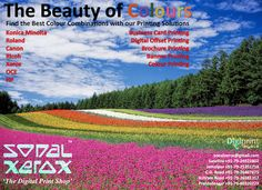 Sonal Xerox Digital Print Services: The Beauty of Colours