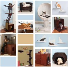 RefinedKind Pet Products! Wow oh wow I am in love with this pet furniture!