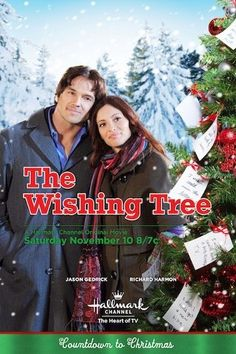 Directed by Terry Ingram. With Jason Gedrick, Erica Cerra, Richard Harmon, Amitai Marmorstein. A special Christmas tree decorated with handwritten wishes helps Evan and his group of orphaned students develop a connection and a sense of family. Xmas Movies, Best Christmas Movies, Hallmark Christmas Movies, Christmas Shows, New Movies, Good Movies, Holiday Movies, Christmas Posters, Christmas Tree