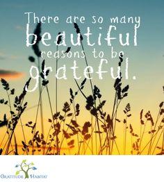 "Many beautiful reasons to be grateful.  8"" x 10"" print. Available at: www.GratitudeHabitat.com #grateful #inspriational-quote #Gratitude Habitat"